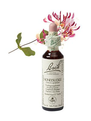Bach Honeysuckle Kamperfoelie 20 ml 16
