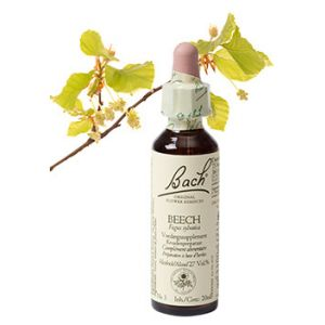 Bach Beech / Beuk 20 ml 03