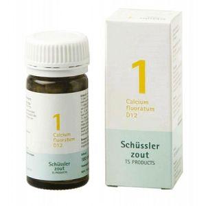 Schüssler salze Pflüger nr 1 Calcium fluoratum D12 100 Tablet glutenfrei