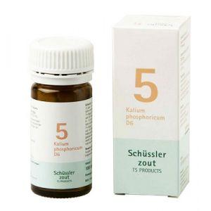 Schüssler salze Pflüger nr 5 Kalium Phosphoricum D6 100 Tablet glutenfrei
